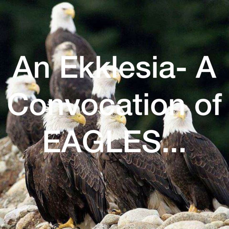 James Becton Ministries/ EaglesVision Apostolic Co!
